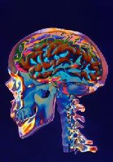 brainenhancemebrainennhance